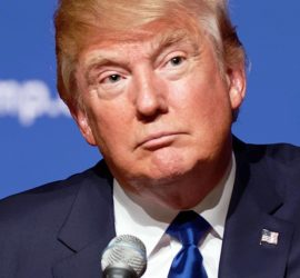 Image used under a Collective Commons License from: https://en.wikipedia.org/wiki/File:Donald_Trump_August_19,_2015_(cropped).jpg